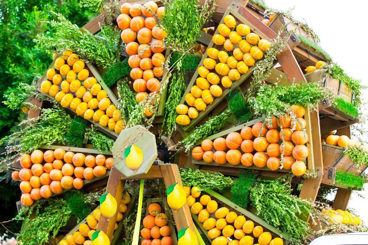 Zitronen für einen gesunden Vitamin C Haushalt im Körper.